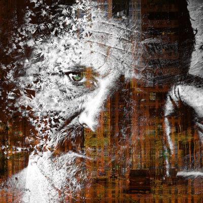Portrait en déconstruction